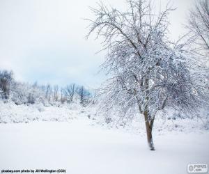Puzzle de Árbol nevado
