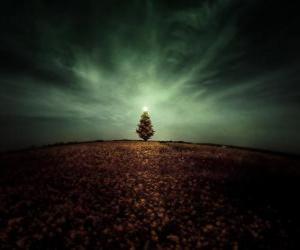 Puzzle de Árbol de Navidad en el Campo