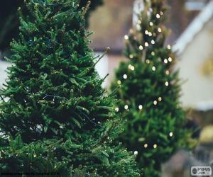 Puzzle de Árboles de Navidad con luces