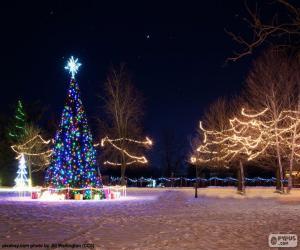 Puzzle de Árboles iluminados, Navidad