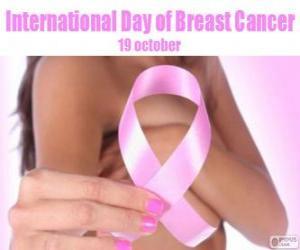 Puzzle de 19 de octubre, Día Internacional del Cáncer de Mama