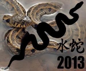 Puzzle de 2013, el año de la Serpiente de Agua. Según el calendario chino, del 10 de febrero de 2013 al 30 de enero de 2014