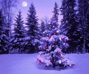 Puzzle de Abetos de Navidad en un paisaje nevado y con la luna en el cielo