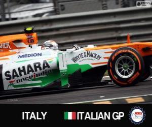 Puzzle de Adrian Sutil - Force India - Monza, 2013