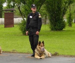 Puzzle de Agente de policía con su perro policía