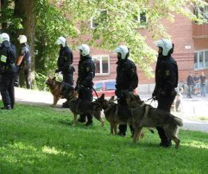 Puzzle de Agentes de policías antidisturbios con perros