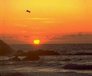 Puzzle de Amanecer en el mar