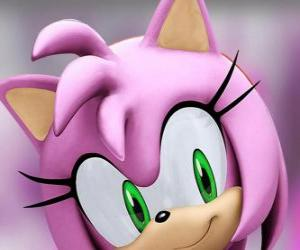 Puzzle de Amy Rose es una eriza rosa de ojos verdes, está locamente enamorada de Sonic