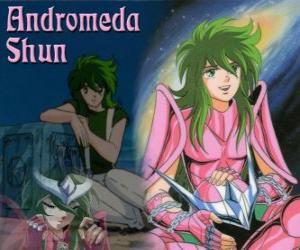 Puzzle de Andromeda Shun, el Santo de bronce de la constelación de Andrómeda