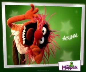 Puzzle de Animal, el loco batería de la banda del Show de los Muppets es un hombre primitivo