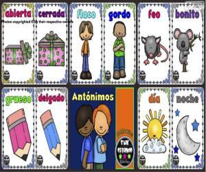 Puzzle de Antónimos