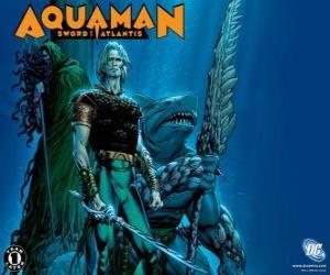 Puzzle de Aquaman fue uno de los miembros fundadores del equipo de la Liga de la Justicia de América o JLA