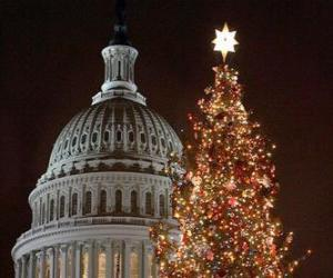 Puzzle de árbol de Navidad del Capitolio