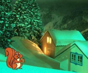 Puzzle de Ardilla comiendo frutos secos durante la noche de Navidad