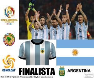 Puzzle de ARG finalista C. América 16