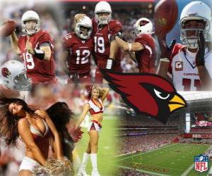 Puzzle de Arizona Cardinals