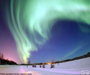 Puzzle de Aurora polar