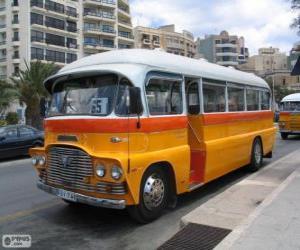 Puzzle de Autobús de Malta