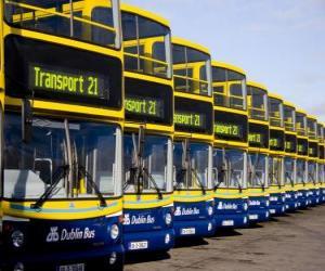 Puzzle de Autobuses, de Dublin en el aparcamiento