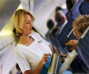 Puzzle de Auxiliar de vuelo