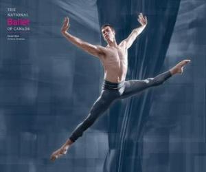 Puzzle de Ballet - Bailarin en acción