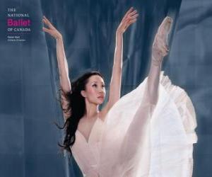 Puzzle de Ballet - Bailarina en acción