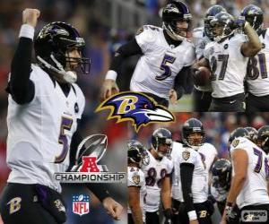 Puzzle de Baltimore Ravens campeón de la AFC 2012