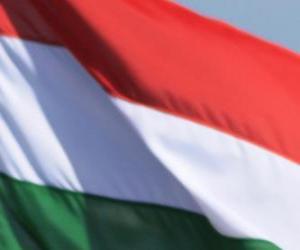 Puzzle de Bandera de Hungría