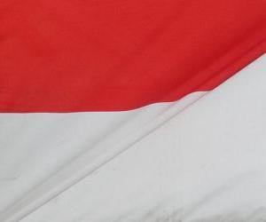 Puzzle de Bandera de Indonesia