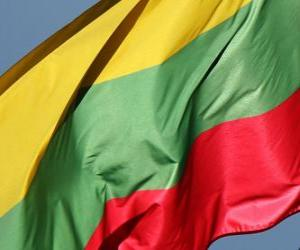 Puzzle de Bandera de Lituania