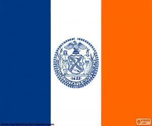 Puzzle de Bandera de Nueva York