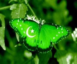 Puzzle de Bandera de Pakistán o Paquistán