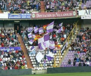 Puzzle de Bandera del Real Valladolid C. F.