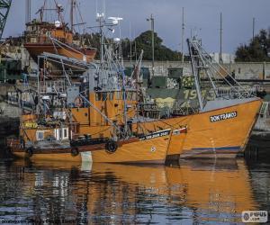 Puzzle de Barcos de pesca
