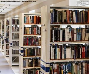 Puzzle de Biblioteca