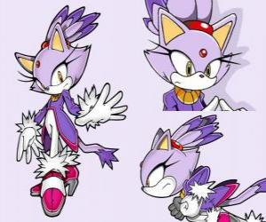 Puzzle de Blaze the Cat, una princesa y una de las amigas de Sonic