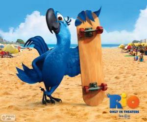 Puzzle de Blu es un divertido guacamayo y el protagonista principal de la película Rio