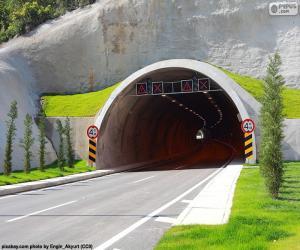 Puzzle de Boca túnel