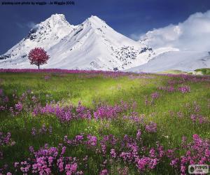 Puzzle de Bonito paisaje de los alpes