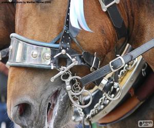Puzzle de Brida de caballo