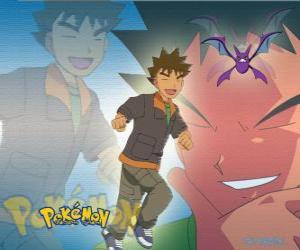 Puzzle de Brock, originalmente era el líder del gimnasio en la Ciudad Plateada (Pewter), especializado en Pokémon del tipo roca.