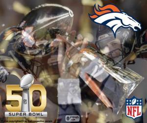 Puzzle de Broncos, campeón Super Bowl 2016