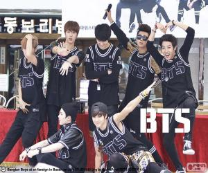 Puzzle de BTS, Bangtan Boys