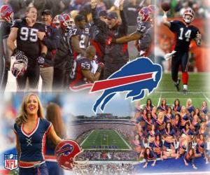 Puzzle de Buffalo Bills