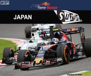 Puzzle de C. Sainz Jr., GP Japón 2016