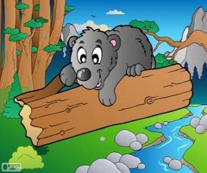 Puzzle de Cachorro de oso