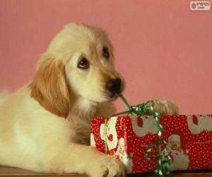 Puzzle de Cachorro jugando con el lazo de un regalo