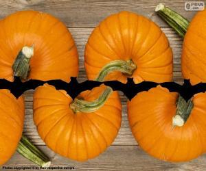 Puzzle de Calabazas para Halloween