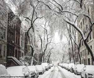 Puzzle de Calle cubierta de nieve