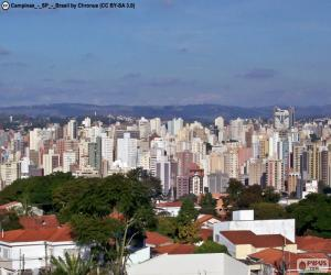 Puzzle de Campinas, Brasil